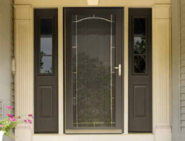Storm Door Designs Picture