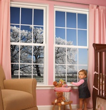 Stanek vinyl windows with low E and argon gas