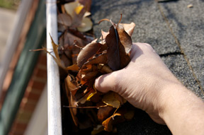 Gutter cleaning removal of leaves
